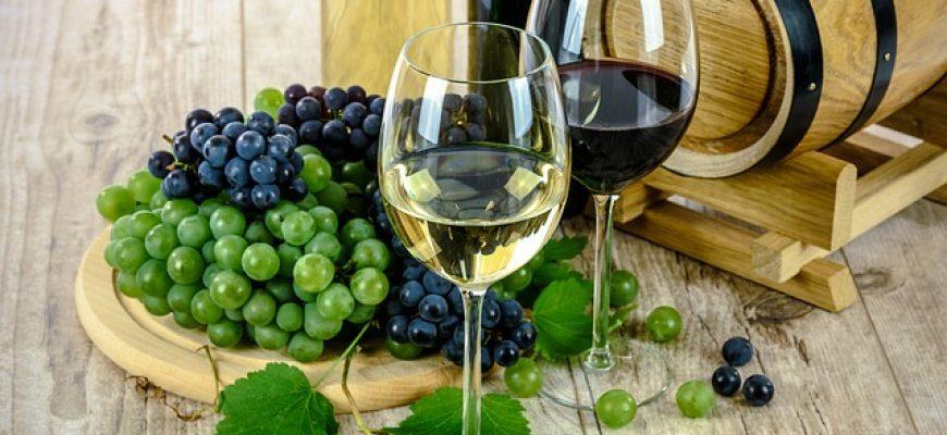 המתנה המושלמת לאוהבי יין: לימודי ייננות