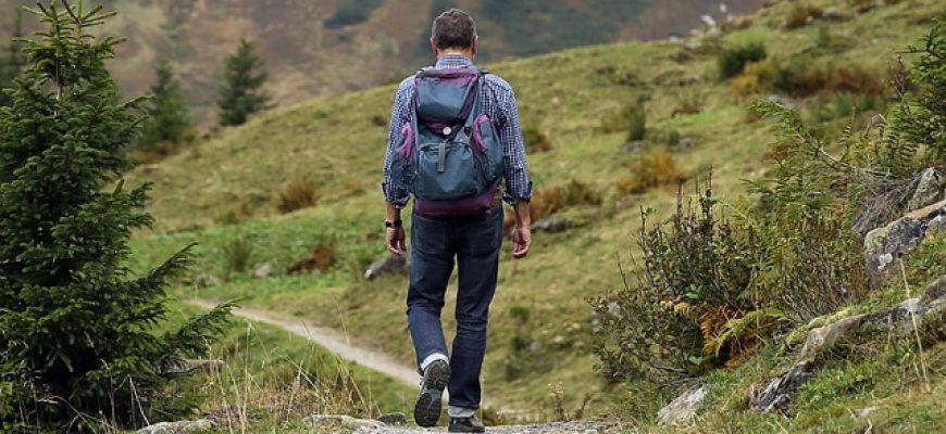איך בוחרים במדריך טיולים מקצועי ומנוסה?